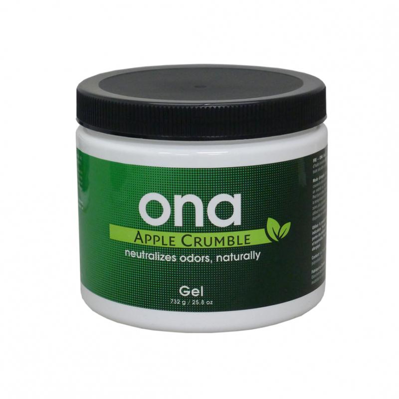 Нейтрализатор запаха ONA Gel Apple Crumble 428 грамм