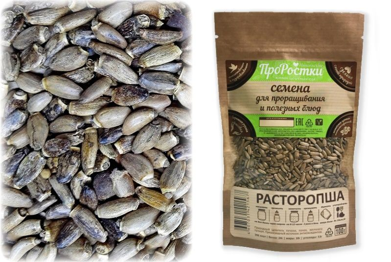 Семена расторопши для проращивания