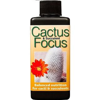 Удобрение для кактусов Cactus Focus