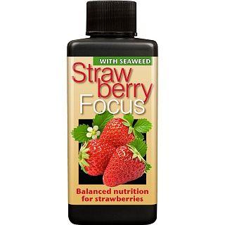 Удобрение для клубники Strawberry Focus